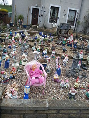 Crazy charity garden in Town Yetholm