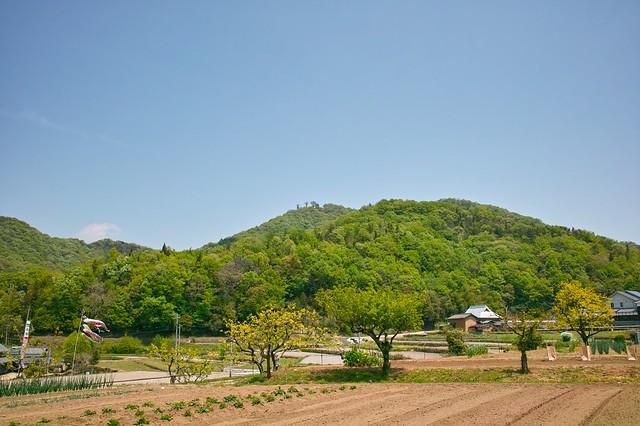 伽藍山(西から望む)