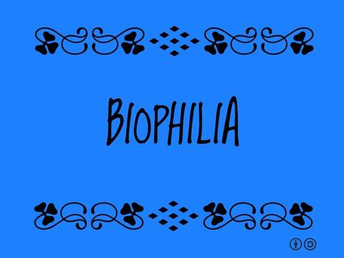 Buzzword Bingo: Biophilia