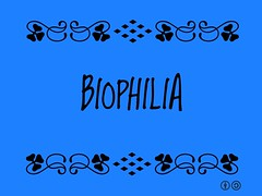 Buzzword Bingo: Biophilia = Urge to affiliate with other forms of life
