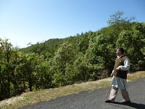 Sacchidanand Bharti looking at the forests of Ufrenkhal