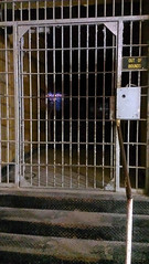 Out of Bounds at Jefferson City Penitentiary