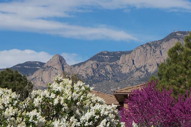 to Albuquerque-14-2.jpg