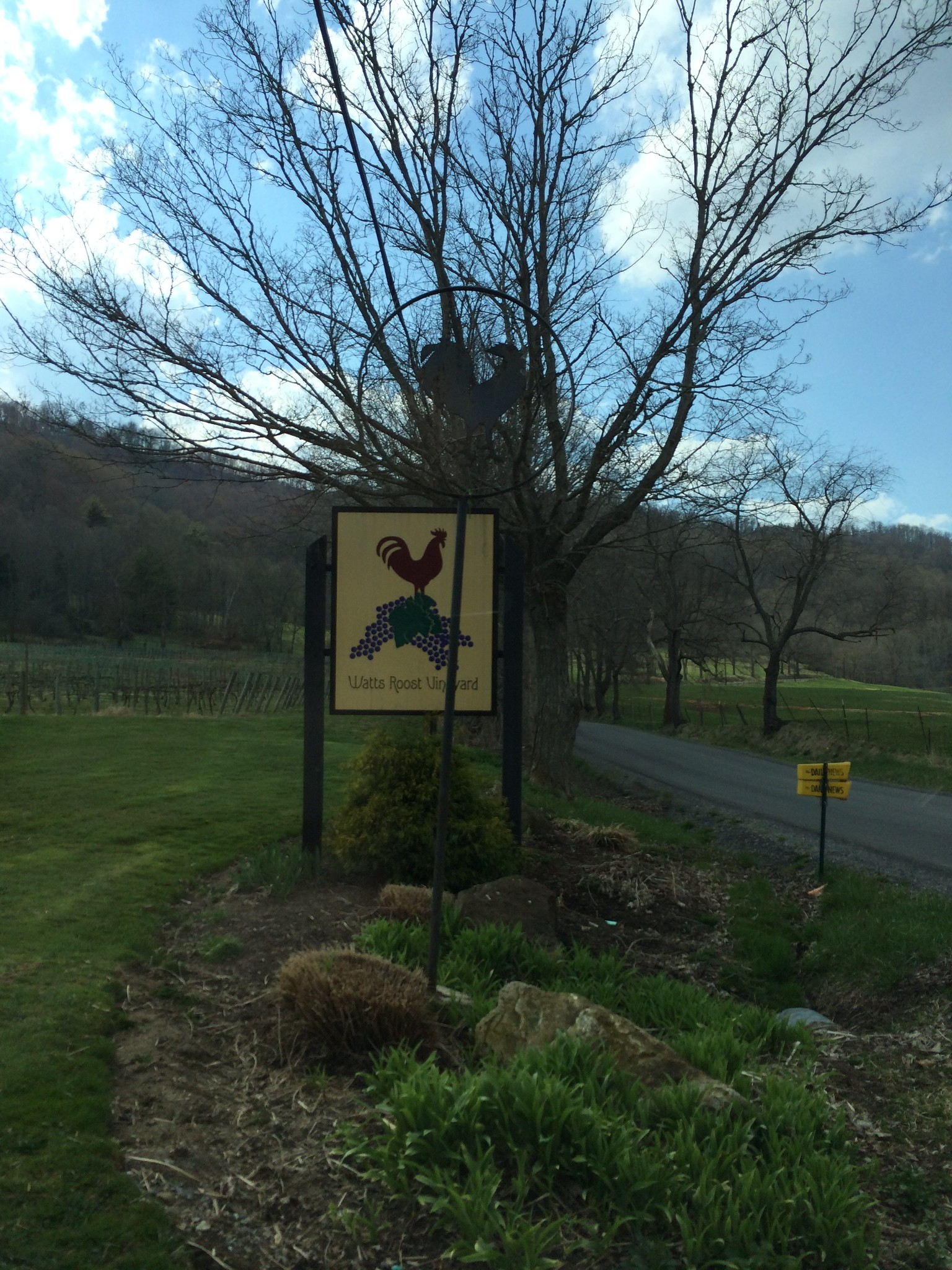 Watts Roost Winery
