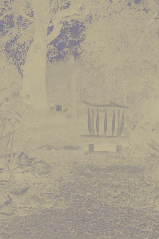 Garden Seat, Esquisse
