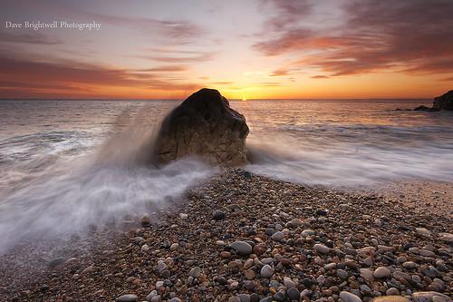 Splash by Dave Brightwell