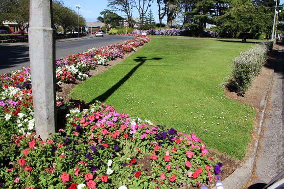 Rose Garden Invercargill Nzealand_1