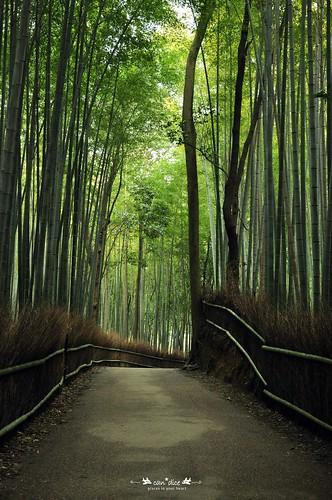 Arashiyama 嵐山 - 01