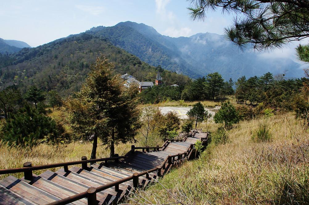 觀霧巨木步道-005