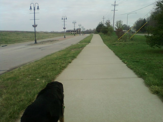 Sunday morning walk with Apollo