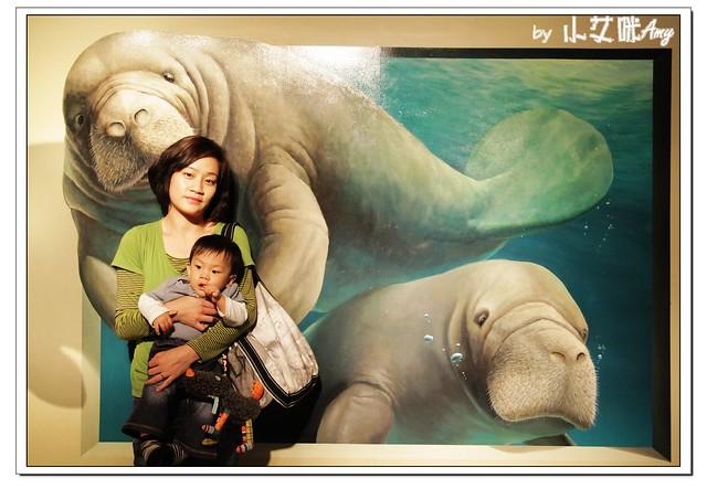 [3D展]高雄駁二藝術特區奇幻不思議日本3D幻視藝術畫展IMG_8109