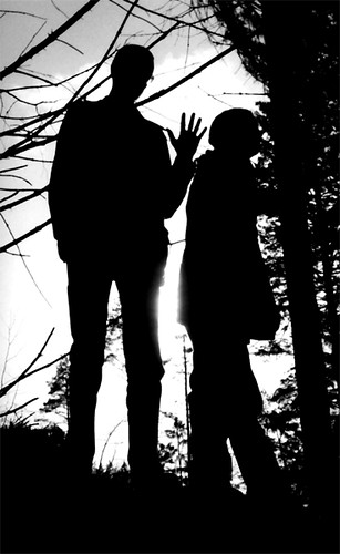 photo of Forest of Shadow