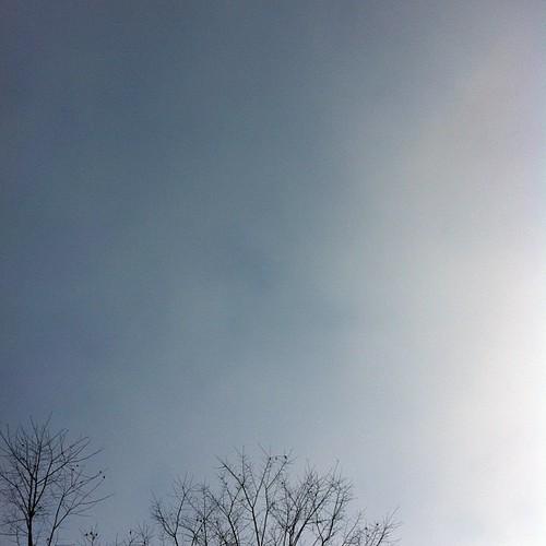 晴れ。#sky