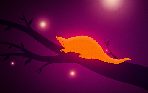 6927618751 4ef2a36a6b Heres Top Ten Wallpapers from the Ubuntu Precise Wallpaper Contest