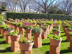 demonstration container garden