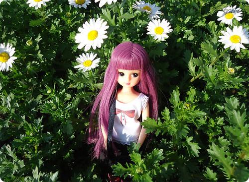 Violet paseo bajo el sol by tatadelacasa
