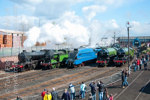 Barrow Hill April 2012