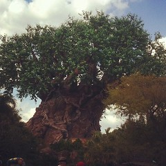 Tree of Tourism. Um, I mean Life.  #disney