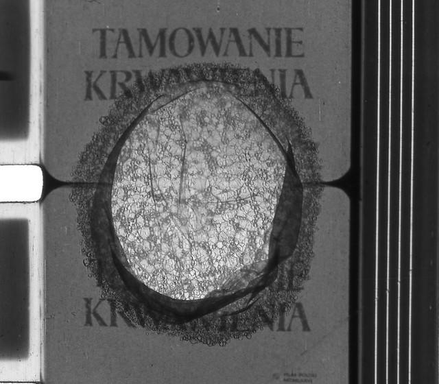 tamowanie - Kopia