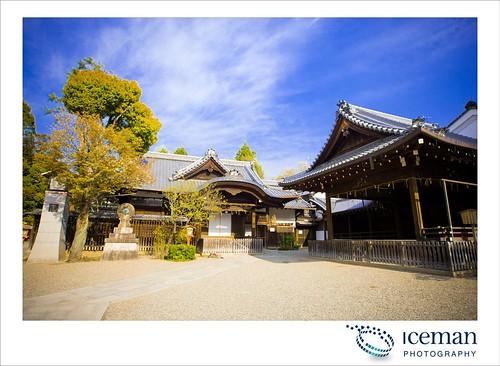 Ysaka Shrine 187