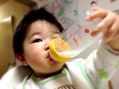今日の片手哺乳瓶飲みとらちゃん(2012/3/5)