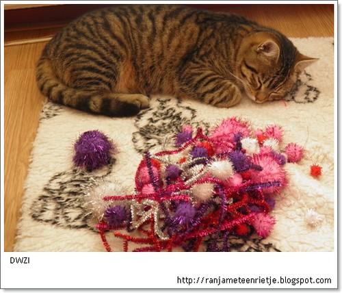 kat met knutsels