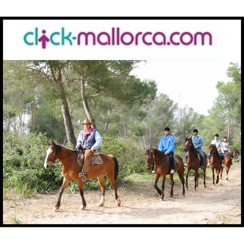 rancho grande horse riding mallorca (2)