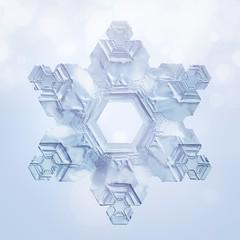 Amore / Snowflake 05