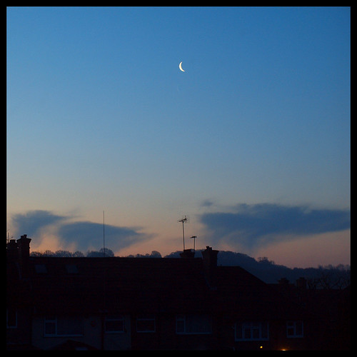 Spring Dawn with Moon