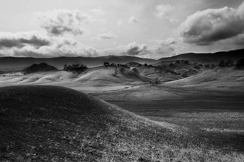 california blackandwhite grass landscape unitedstates hills pasture oaktrees paskenta westtehama