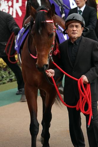 20120219 シルクフォーチュン / Silk Fortune