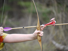 weapon, longbow, sports, bow and arrow,