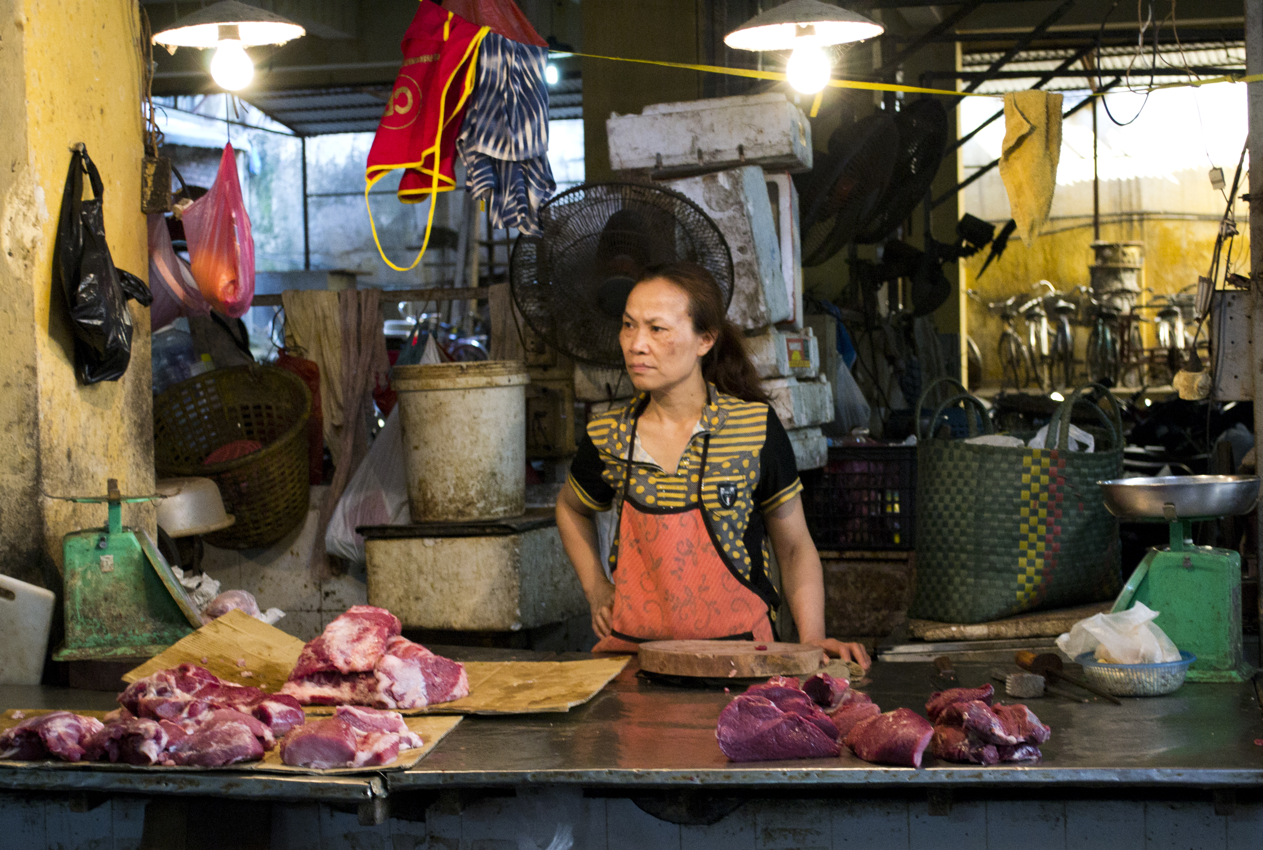 Wet Markets of Hanoi