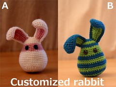 Customize your own rabbit