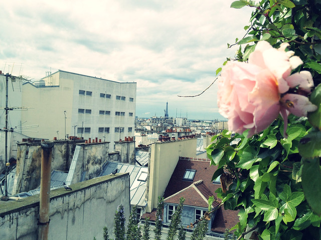 paris may 2012.