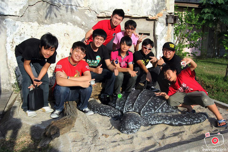 TRYC-2013-DAY-1-TURTLE-PIC