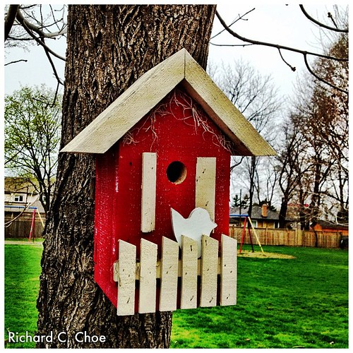 Bird House, St. James UC by rchoephoto
