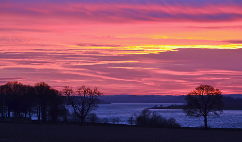 sunset silhouette dusk trees tree hedgerow england rutland normanton rutlandwater lake reservoir andrewdejardin