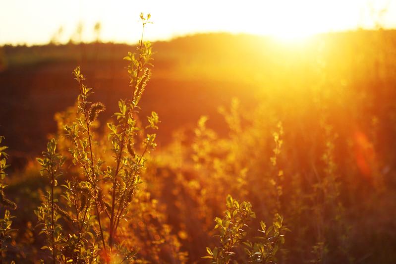 auringonlasku blogi 1