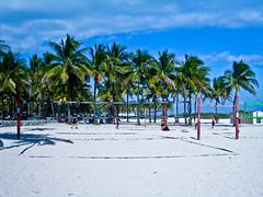 Beach Volleyball Anyone?
