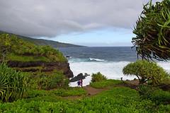 2012-02-10 02-19 Maui, Hawaii 195 Road to Hana, Ohe'O Gulch