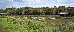 Chattanooga Renaissance Park