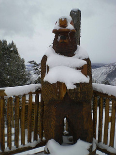 Glenwood Caverns bear on a snowy day