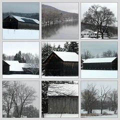 March black and white landscapes