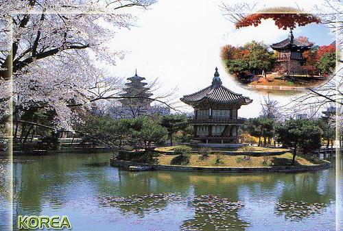 postcard korea card
