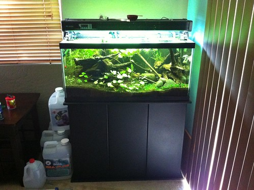 Fish  Aquarium Supplies: Aquarium Lighting Hoods  Canopies