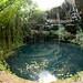 Fisheye View of Xochempich Cenote - Yucatan, Mexico por uncorneredmarket
