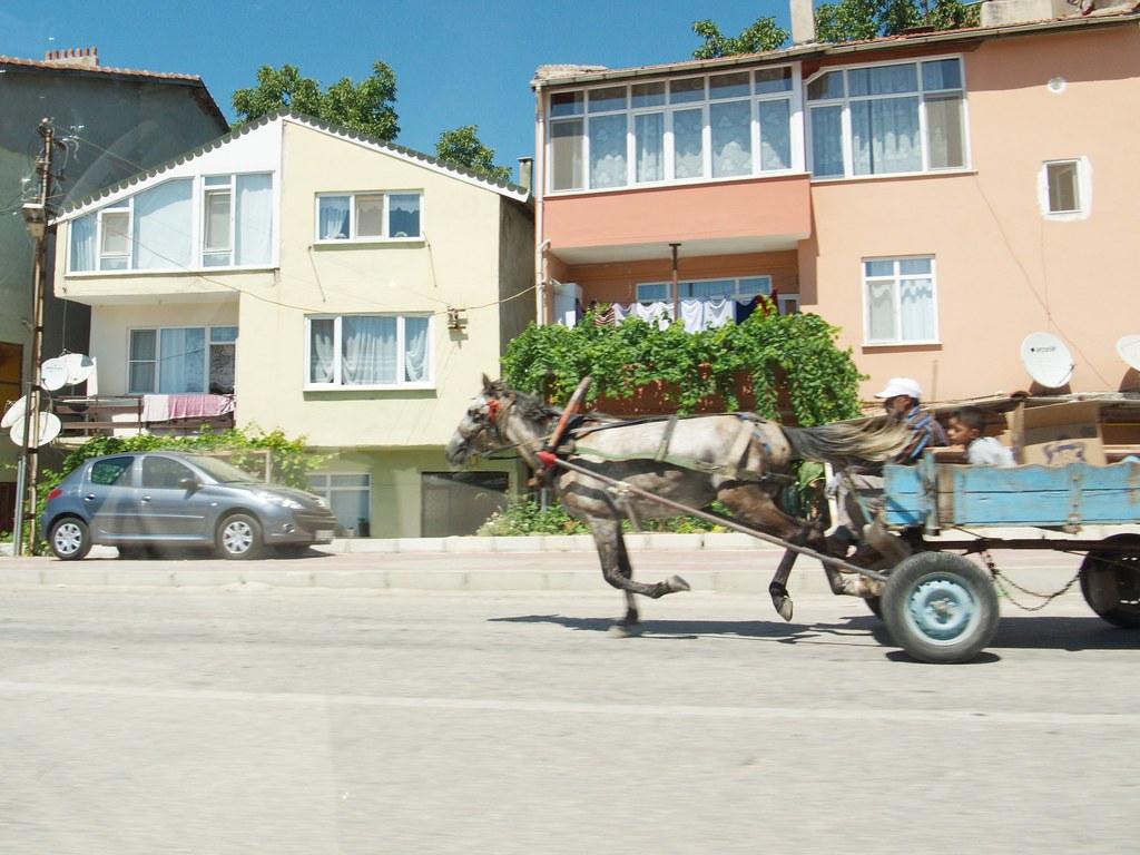 A horse with a wain in Tekirdağ