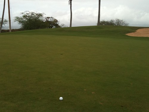 Hawaii Prince Golf Club 401