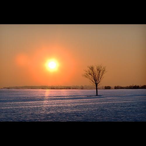 cambridge sunset snow cold cotonwalk